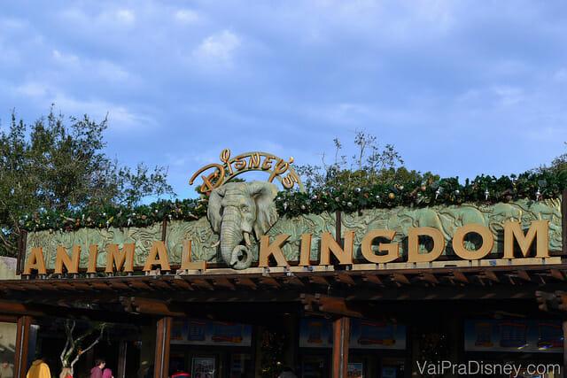 Como o Animal Kingdom é todo aberto, é um dos parques que mais se perde quando a chuva atrapalha a programação.