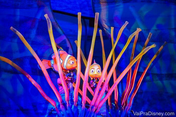 Nemo no Animal Kingdom - É musical de verdade!