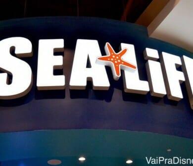 O Sea Life é para mim a atração mais legal do I-Drive 360.
