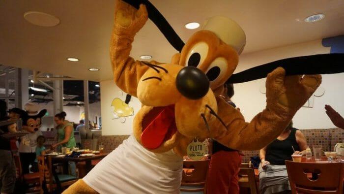 Pluto de avental de chef!