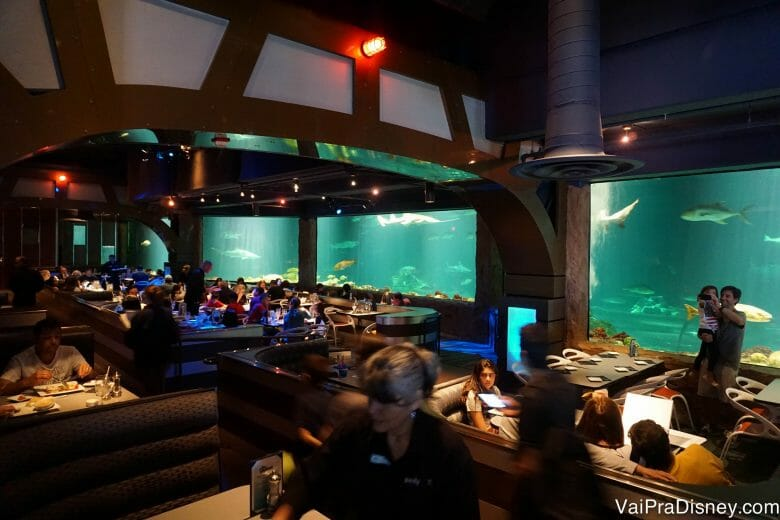 Um pouquinho do ambiente incrível do Sharks Underwater Grill.