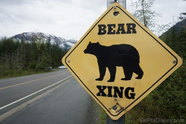 Só vimos urso na placa mesmo.