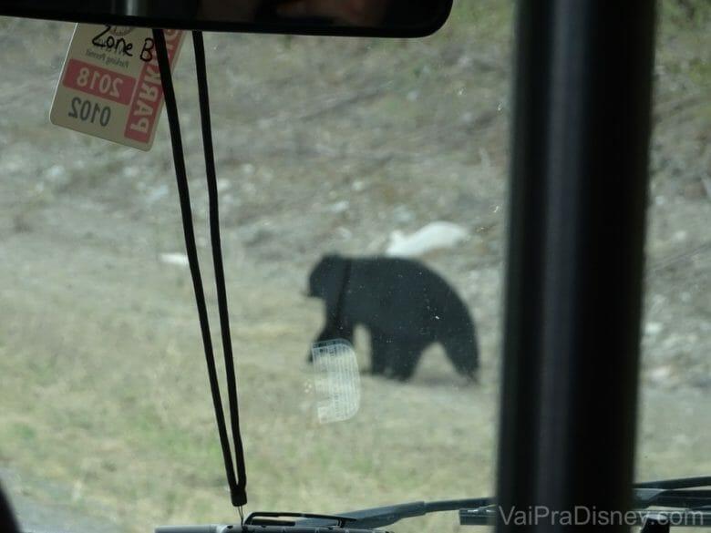 Aquelas que publica foto ruim de propósito, só pra mostrar como estava realmente perto do ônibus